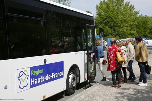 Bus / Car